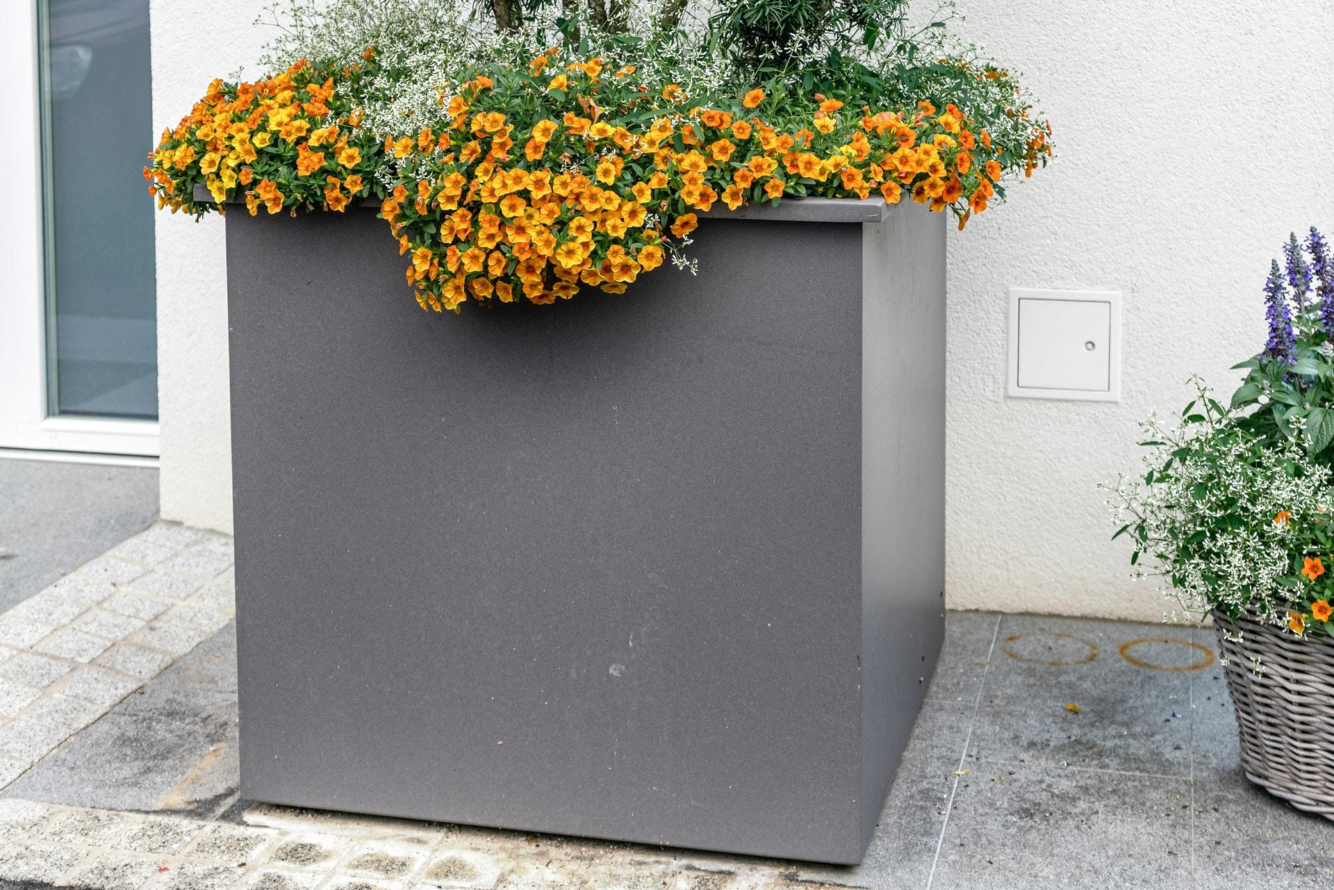 S 23 a | Übergrößen Blumentopf aus Aluminium grau beschichtet, Quadratisch, orange Blumen | Svoboda
